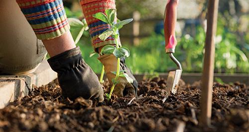 Een goed uitgeruste tuinier is er twee waard!